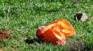 Kızıltepe'de poşete konulmuş iki cenin bulundu