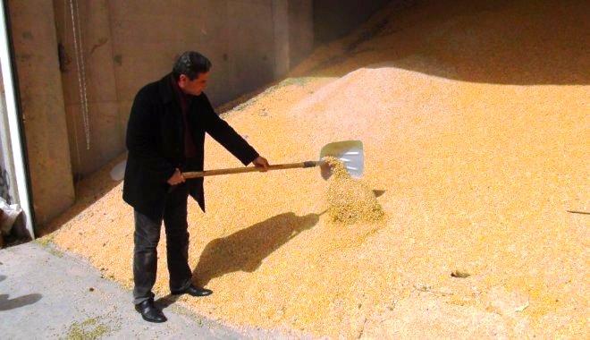 DİB Belgesi iptal edilince mısır depoda kaldı