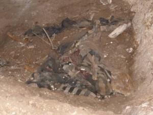 Mağarada bulunan kemiklerin korunması için savcılığa başvuru