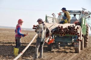 40 derecede oruç tutup tarlada çalışıyorlar