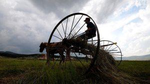 Elektrik borcu olan çiftçiye destek verilmeyecek