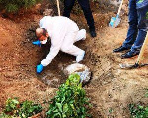 Derik'te 2 ceset bulundu