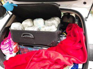 Uyuşturucu operasyonu: 1 kişi tutuklandı