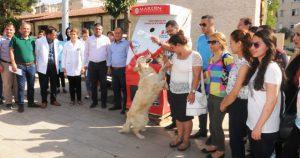 Sokak hayvanları  için yem otomatı