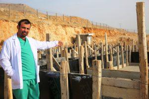 Mardin'e Hayvan Hastanesi yapılıyor