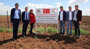 Belediyeden tarım ve  hayvancılığa destek