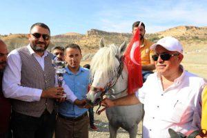 Mardin'de jokeyler Türk bayrağı için yarıştı