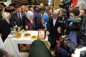 Mardin Bulguru'na Ankara'da büyük ilgi