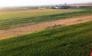 20 bin dekar tarım arazisi sulandı