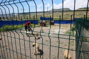 Hayvan Hastanesi yenilendi