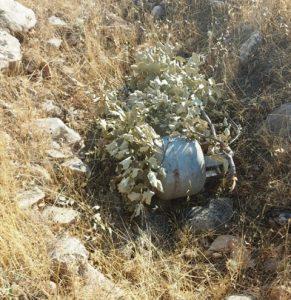 Araziye gizlenmiş 2 piknik tüpü ele geçirildi