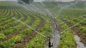 Dicle Elektrik'ten elektrik tasarrufu için tarımsal sulama araştırması