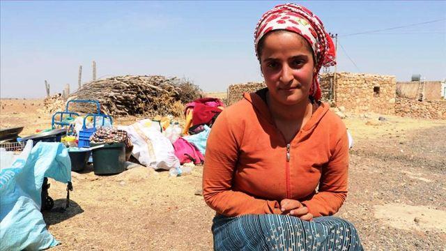 Sakarya'da darbedilen mevsimlik işçi: Bizi darp ettiler, Kürt Türk çatışması değil