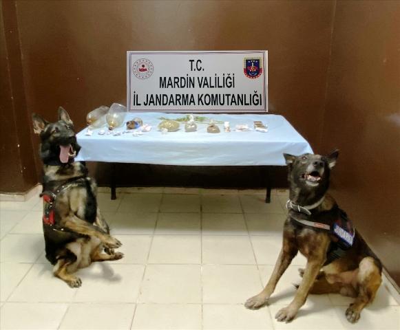 """""""Torbacı"""" operasyonunda 4 şüpheli gözaltına alındı"""