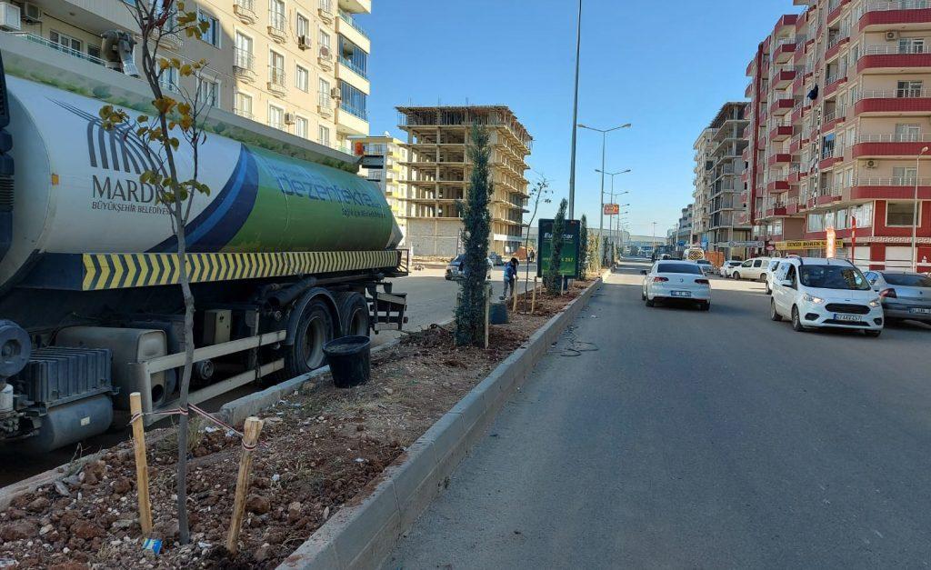 Yeşil bir Mardin için seferberlik