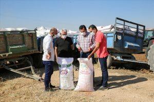 Güneydoğu'daki üreticiye faizsiz tohum ve gübre desteği