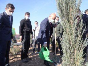 Vali Demirtaş, ağaç fidanlarını toprakla buluşturdu