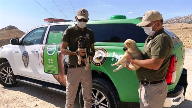 Çevre, doğa ve hayvanları koruma polisleri Mardin'de görev başında