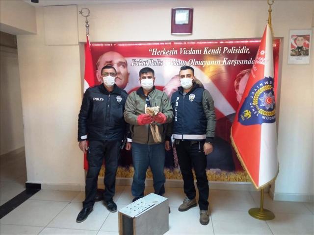 Yaralı Şahin'i Polisler Kurtardı