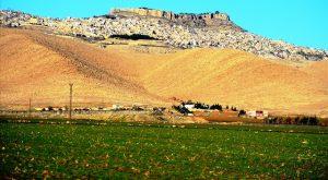 Mardin'in bereketli toprakları imara açılmayacak