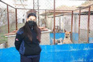 İnfaz koruma memurları cezaevi bahçesinde besledikleri sokak hayvanlarını sahiplendiriyor
