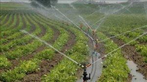 Dicle EDAŞ'tan tarımsal sulama abonelerinin borçlarına ilişkin açıklama