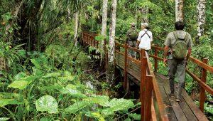 Mardin Ekoturizm doğa yürüyüş parkuru hizmeti alınacak