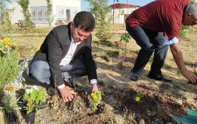 Başkan Aksoy Fidan Dikti