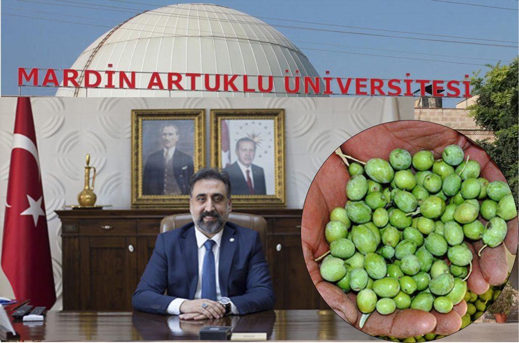 Artuklu Üniversitesi 'Mardin  Zeytin Çalıştayı' düzenleyecek